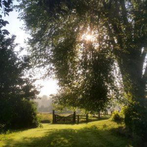 Jardin soleil
